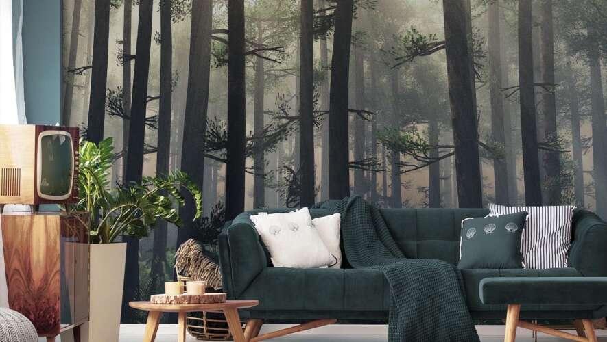 Fototapeta las za mgłą